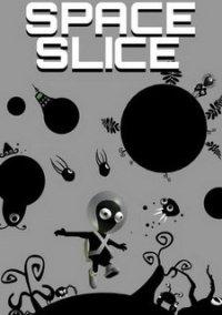 Space Slice – фото обложки игры