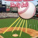Скриншот Baseball Game: The Fly Ball