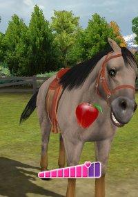 Обложка Pony Friends 2
