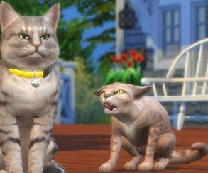 Коты и собаки в новом дополнении для The Sims 4