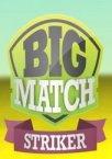 Big Match Striker