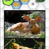 Скриншот PuzzleTwistCreatures
