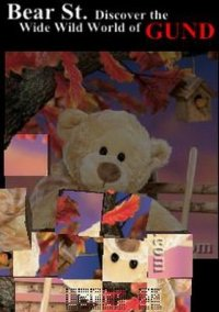Обложка Bear St. Tumbler Puzzle
