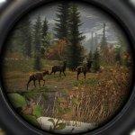 Скриншот Cabela's Big Game Hunter: Pro Hunts – Изображение 13