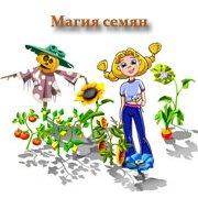 Обложка Магия семян