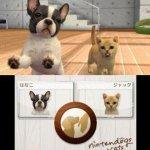 Скриншот Nintendogs + Cats – Изображение 6