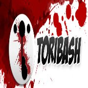 Обложка Toribash