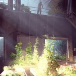 Скриншот State of Decay 2 – Изображение 8