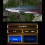Скриншот Reel Fishing Paradise 3D – Изображение 27