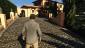 GTAV PS4 - Изображение 8