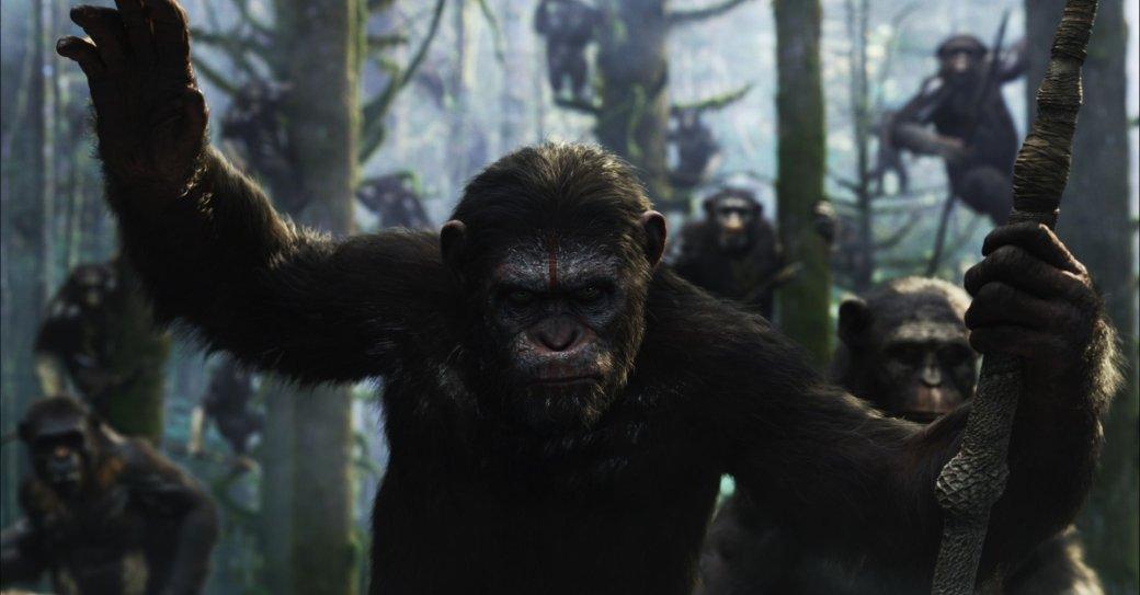 Оскар 2015: прогнозы - Изображение 20