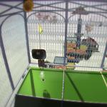 Скриншот Vertiginous Golf – Изображение 7