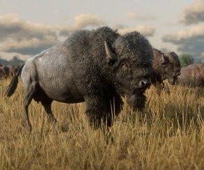 Гифка дня: бизон из другого мира вRed Dead Redemption2