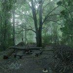 Скриншот Kingdom Come: Deliverance – Изображение 47
