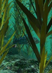 Check Dive – фото обложки игры