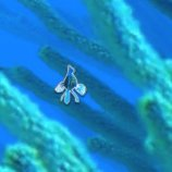 Скриншот Coral Racer – Изображение 1