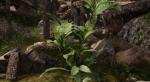 Этот мод для Skyrim сделает растительность по-настоящему реалистичной. - Изображение 11