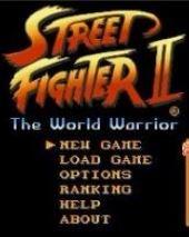 Master Fighter II: The World Warrior – фото обложки игры