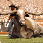 Скриншот NCAA Football 12 – Изображение 1
