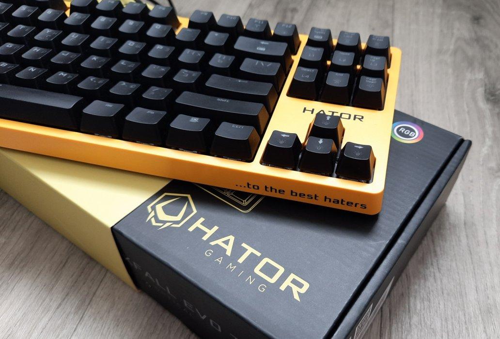 Обзор клавиатуры Hator Rockfall EVO TKL. Бюджетная оптическая клавиатура | Канобу
