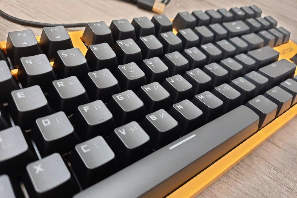 Обзор клавиатуры Hator Rockfall EVO TKL. Бюджетная оптическая клавиатура | Канобу - Изображение 1442